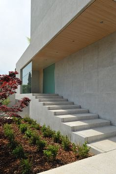 Concrete staircase leading towards the entrance of House D by Bevk Perovic Architects.