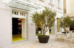 Goli & Bosi Split Design Hostel - Minimalissimo