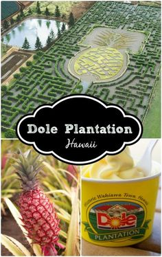 If you're thinking about Hawaii, put the Dole Plantation Oahu on your itinerary!