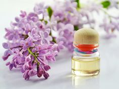 Herbs are the ingredients of our essential oils and can reduce stress, improve mental clarity and uplift the mood on a natural basis. Xmas Cross Stitch, Organic Beauty, Coupon Codes, Essential Oils, Fragrance, Herbs, Pure Products, Make It Yourself, Reduce Stress