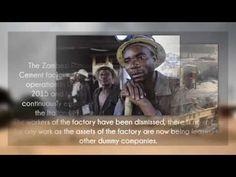 What about Zambezi Portland Cement?