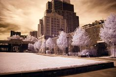 """Imagine How it will look if all the colors change to a single color? Check out these """"50+ Amazing Examples of Infrared Photography"""""""