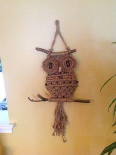 Owls By John