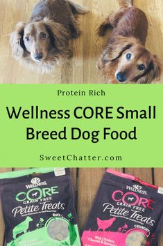 Wellness CORE: Protein Rich Nutrition for Small Breed Doggies Small Dog Breeds, Small Breed, Small Dogs, Dog Treat Recipes, Dog Food Recipes, Wellness Core, What Dogs, Dog Crafts, Homemade Dog Treats