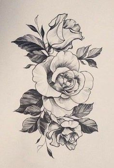 Art Sketches Ideas - Drawing Rosen Art Sketches Ideas - Drawing Rosen Kunstskizzen Ideen - Drawing R Rose Drawing Tattoo, Pink Drawing, Tattoo Sketches, Tattoo Drawings, Art Sketches, Rose Sketch, Flower Sketches, Rose Tattoos, Flower Tattoos