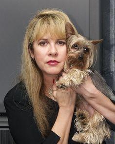 Stevie Nicks: Animal Lover (C-Dog & Company) Stevie Nicks Lindsey Buckingham, Buckingham Nicks, Stephanie Lynn, Grace Slick, Stevie Nicks Fleetwood Mac, Celebs, Celebrities, Yorkshire Terrier, Dogs