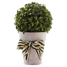 """Check out this item at One Kings Lane! 10"""" Boxwood Ball in Planter w/ Bow, Faux"""