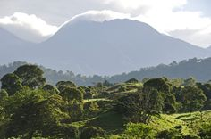 Chiriquí Province, Highlands image gallery - Lonely Planet