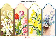 Botanic Bookmarks Set 2 on Craftsuprint designed by June Young - A set of 4 shaped-top bookmarks featuring floral subjects. These could be reduced to make matching gift tags if preferred. - Now available for download!