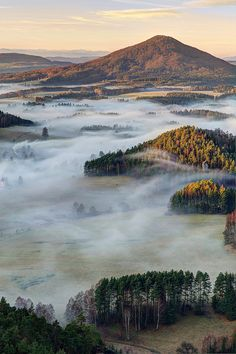 Foggy morning in Bohemian Switzerland National Park, Czech Republic.