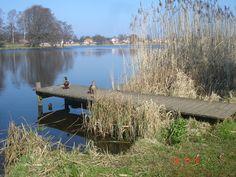 Hornbaek lake in spring. (Photo: Lotte Lund)