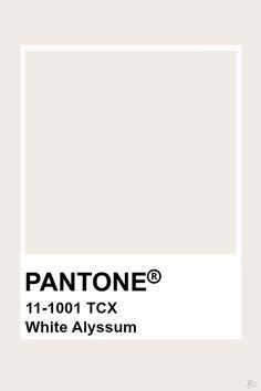 Pantone Star White Color Schemes in 2019 Pantone, Pantone white color pantone - White Things Pantone Beige, Paleta Pantone, Pantone Swatches, Color Swatches, Pantone Colour Palettes, Pantone Color, Revit, Cloud Dancer, Colour Board