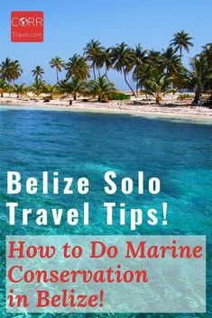 Diving is one of the top things to do in Belize so why not volunteer while diving? Here is how I did coral reef protection #Volunteer work in BEAUTIFUL #Belize as part of my solo travel and Belize solo travel tips on how you can too! By @corrtravel #CORRTravel Solo Travel Tips | Solo Female Travel Tips | Over 40 Travel | Voluntourism Travel | Eco Friendly Travel Tips | Sustainable Travel Tips | International Travel Tips | Travel Tips and Tricks | Retirement Travel Ideas International Volunteer Programs, International Travel Tips, Solo Travel Tips, Marine Conservation, Volunteer Work, Airline Travel, Belize Travel, Travel Around The World, Travel Ideas
