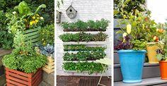 Productos #ecológicos y de proximidad. ¿Qué mejor que de tu propio huerto? Ahora no necesitas tener un gran terreno para cultivar tus propias hortalizas. Te damos algunos consejos prácticos para empezar un huerto urbano en el balcón de tu casa. #Huertourbano #Consejos #Tendencias