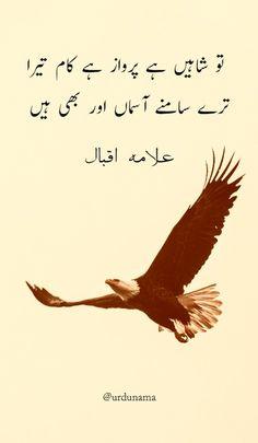 Poetry Quotes In Urdu, Best Urdu Poetry Images, Urdu Poetry Romantic, Ali Quotes, Love Poetry Urdu, Urdu Quotes, Iqbal Poetry In Urdu, Urdu Poetry Ghalib, Sufi Poetry
