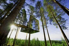 Green Architecture I Mirrored Tree House