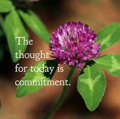 DAY 62 Apr. 1: The thought for today is COMMITMENT. Until one is committed there is hesitancy, a chance to draw back, always ineffectiveness. Concerning all acts of initiative and creation, there i...