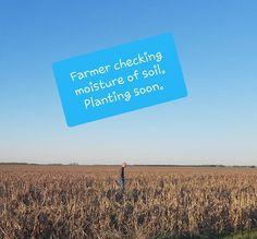 Family Farm Planting Season has begun! Read about a Ks farm! Corn Plant, Holy Week, He Day, Being A Landlord, Farm Life, Planting, Farming, Entertaining, Seasons