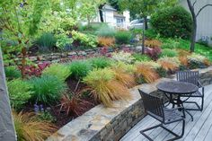 the plants that seem to be low maintenence — Cree Sevenhttp://www.houzz.com/projects/882527/moraga-country-club-small-frontyard
