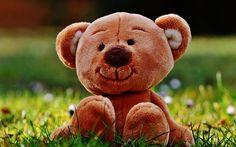 壁紙をダウンロードする 玩具, テディベア, 熊