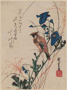 Oriole and Autumn Flowers  Artist Utagawa Hiroshige I, Japanese, 1797–1858