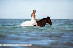 Don't really want to do this in my wedding dress, I just think it'd be fun to go horseback riding in the ocean! Montego Bay Jamaica, Wedding Photos, Wedding Ideas, Wedding Stuff, Wedding Shit, Wedding Fun, Party Photos, Wedding Bells, Wedding Details