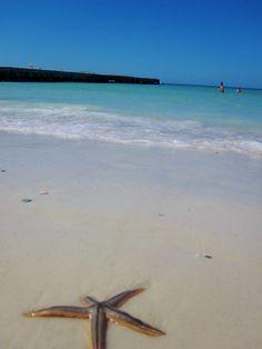 Coquina Beach at the south end of Anna Maria Island, Fl