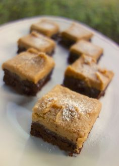 Peanut Butter Frosted Brownies | Plain Chicken