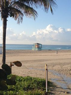 Yup, this is my treadmill in Miami Beach!  A great way to start the day!  Get some Moto!  www.professorrealestate.com