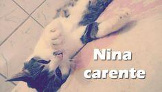 Nina Carente