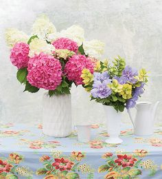 The unusual soft green blooms of Limelight Hydrangea change to pink in autumn, and either way they are a great choice for a bouquet, on their own or with other flowers too. http://emfl.us/AxLd