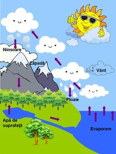 1st Day Of School, After School, Educational Activities, Preschool Activities, Water Cycle Poster, Romanian Language, Teaching Geography, In Natura, Teacher Supplies