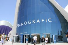 Oceanographic in Valencia contains fish and marine animals from around the world in large underground tanks and tunnels.