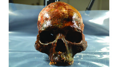 Researchers in Sweden have uncovered evidence of a behavior never seen before in ancient hunter-gatherers: the mounting of decapitated heads onto stakes. The grim discovery challenges our understanding of European Mesolithic culture and how these … Stone Age People, Stone Age Man, Forensic Artist, Doorstop Pattern, Old Head, Arte Tribal, Heritage Foundation, Early Humans, Archaeology News