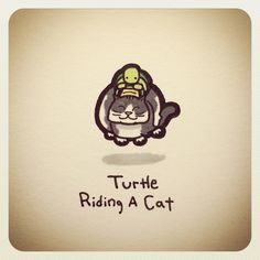 Turtle Riding A Cat