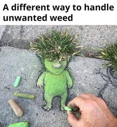 Artistic weeds