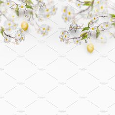 Spring blossom branches with hanging yellow Easter eggs at white wall background, banner. Easter background with copy space Easter Backgrounds, Spring Blossom, White Walls, Branches, Easter Eggs, Concept, Stud Earrings, Decor, Off White Walls