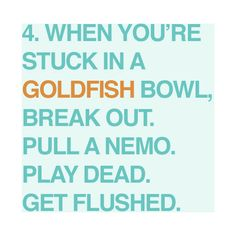 get flushed. it worked for Nemo! Finding Nemo Quotes, Goldfish Bowl, Wonder Quotes, Life Rules, I Love To Laugh, Thoughts And Feelings, Good Advice, Best Quotes, Awesome Quotes