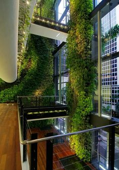 39 Insanely Cool Vertical Gardens Singaporean Office Garden An award-winning interior garden created by Tierra Design / POD for a building in Singapore's Central Business District. Architecture Durable, Green Architecture, Sustainable Architecture, Architecture Design, Biophilic Architecture, Singapore Architecture, Building Architecture, Sustainable Design, Contemporary Architecture