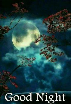 Goodnight my love. Good Night Friends, Good Night Wishes, Good Night Sweet Dreams, Good Night Moon, Good Night Image, Good Morning Good Night, Day For Night, Night Qoutes, Good Night Quotes