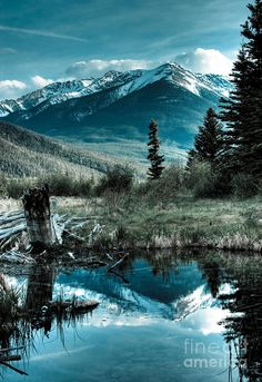 White mountain peaks reflect on a pond near Vermilion Lake. An adequate image to say, Oh Canada! Taken at of Banff National Park, Alberta, Canada. What A Wonderful World, Beautiful World, Beautiful Places, All Nature, Amazing Nature, Take Better Photos, Pics Art, Canada Travel, Lakes