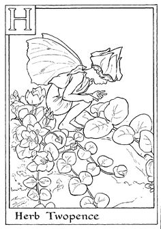Printable Fairy Colouring Page H Is For Herb Twopence
