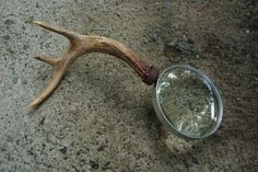 Antler Magnifying Glass Hearth And Home, Magnifying Glass, Antlers, Horns, Deer Heads, Deer Horns, Deer Antlers