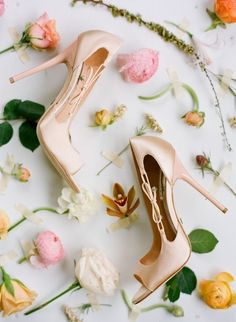 wedding shoes bow In addition, you can also find r. wedding shoes bow In addition, you can also find rhinestone embellished ankle w Bow Shoes, Me Too Shoes, Lace Shoes, Floral Shoes, Blush Bridal Shoes, Blush Shoes, Pastel Shoes, Leopard Print Wedding, Hello Kitty Wedding