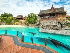 Siam Park Parks, Outdoor Decor, Home, Ad Home, Homes, Haus, Parkas, Houses