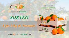 Mi Cosecha Propia te invita al sorteo de una caja de 15 kg de naranjas