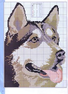 Cross-stitch Husky, part 1... Gallery.ru / Фото #6 - Disenos de animales en punto de cruz - anfisa1