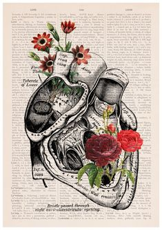Flowery Heart Poster, A3 poster, anatomical art, Roses art, home decor, Wall…