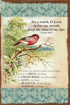 "Taped this on the wall beside my bed. I try to pray it everyday, asking the Lord for help. ""Set a guard, oh Lord, over my mouth, Keep watch over the door of my lips"". Psalm ~ Little Birdie Blessings Psalm 141, Scripture Verses, Bible Verses Quotes, Bible Scriptures, Motivational Scriptures, Devotional Quotes, Healing Scriptures, Biblical Quotes, Think Before You Speak"