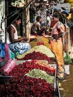 Petals in Pondicherry